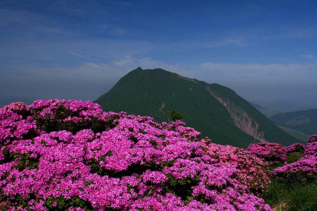 s-鶴見山20080601 035