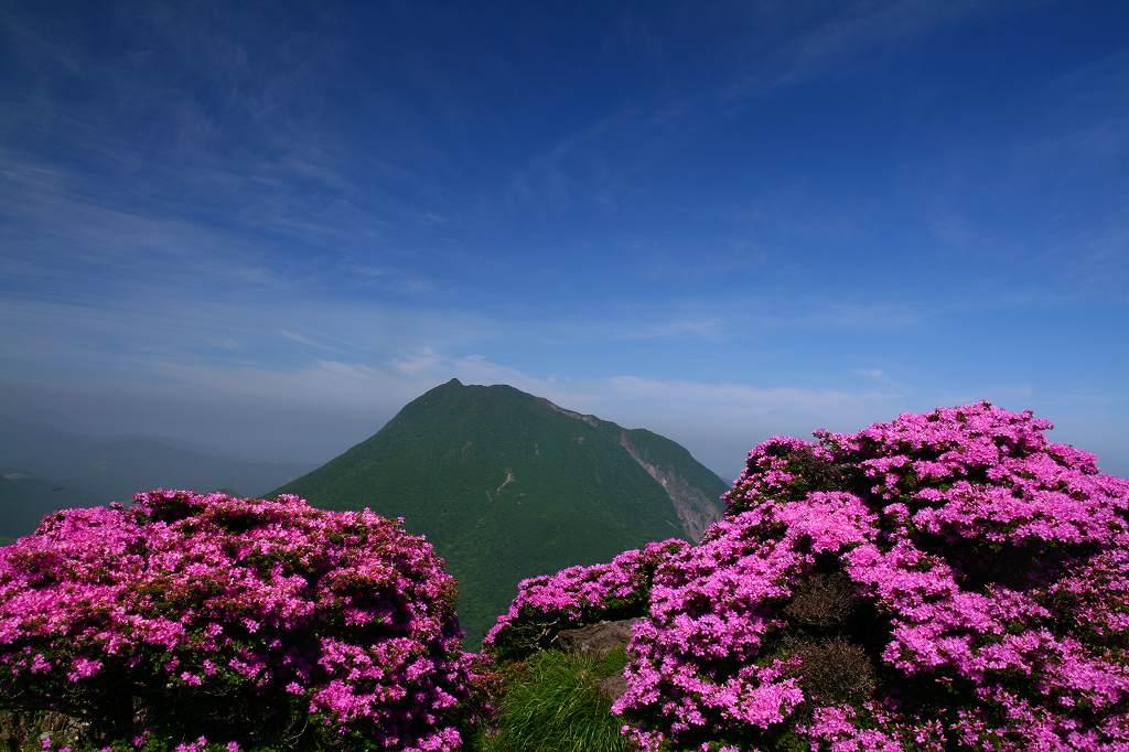 s-鶴見山20080601 038
