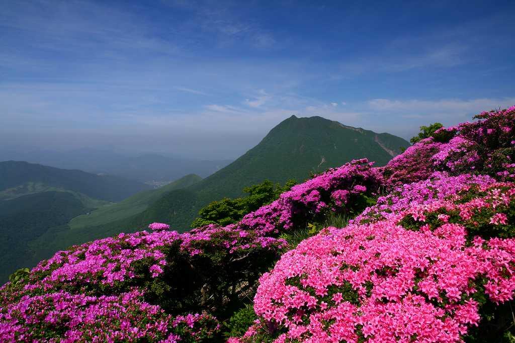 s-鶴見山20080601 052