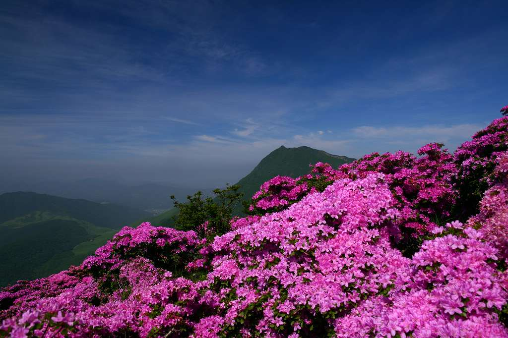 s-鶴見山20080601 055