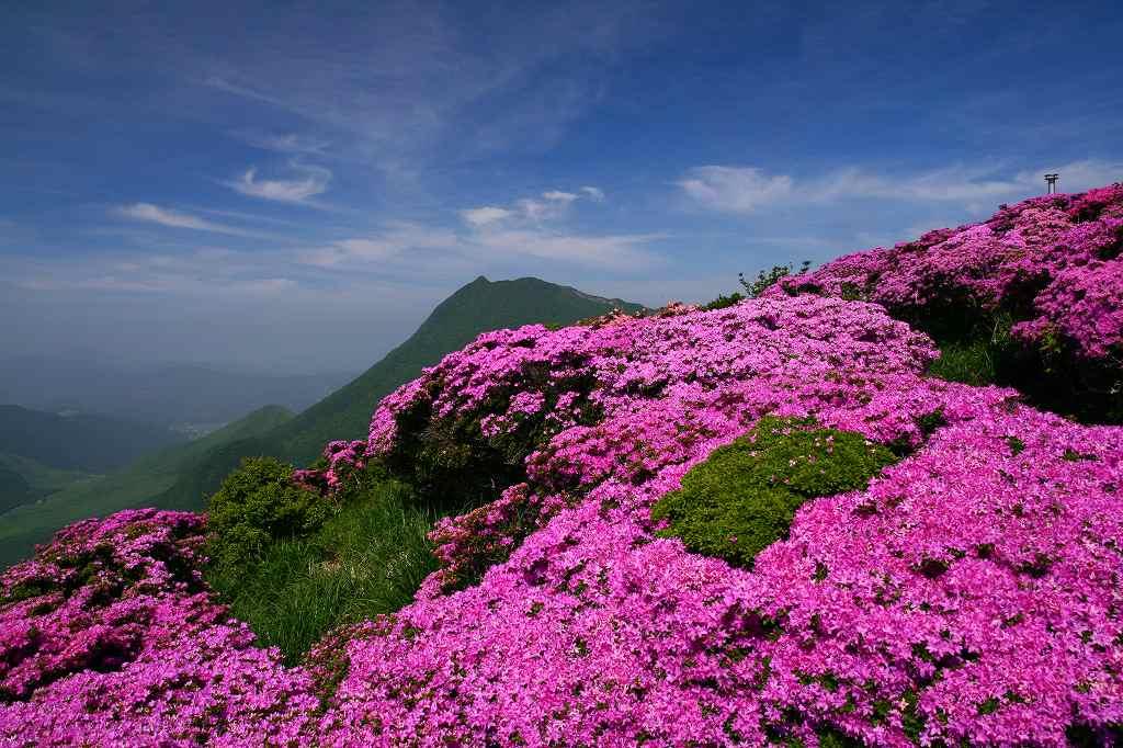 s-鶴見山20080601 080
