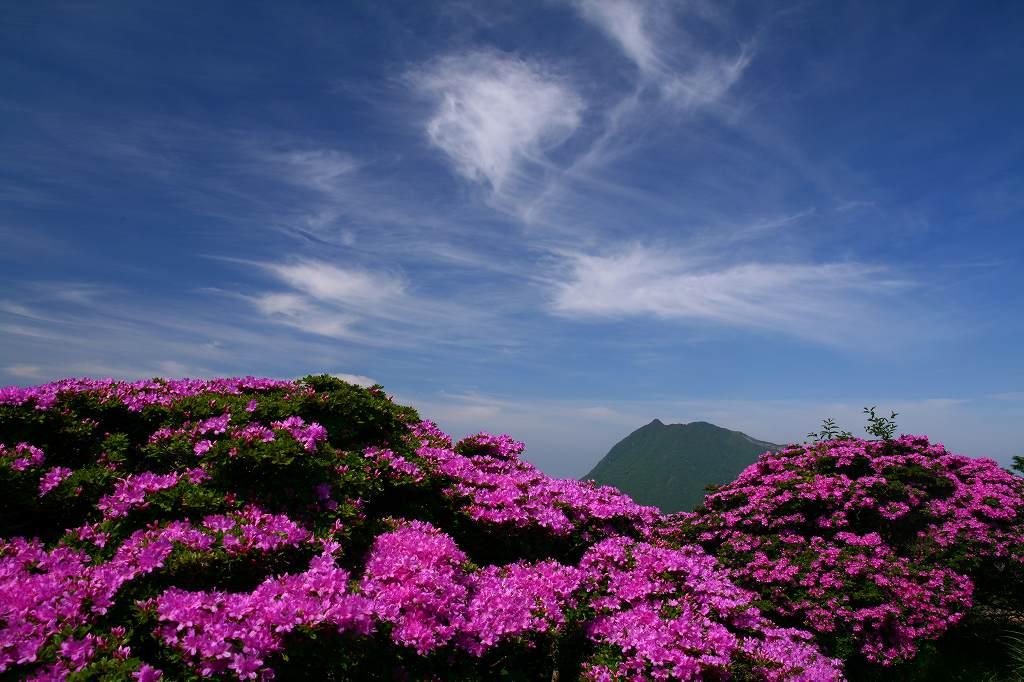 s-鶴見山20080601 098