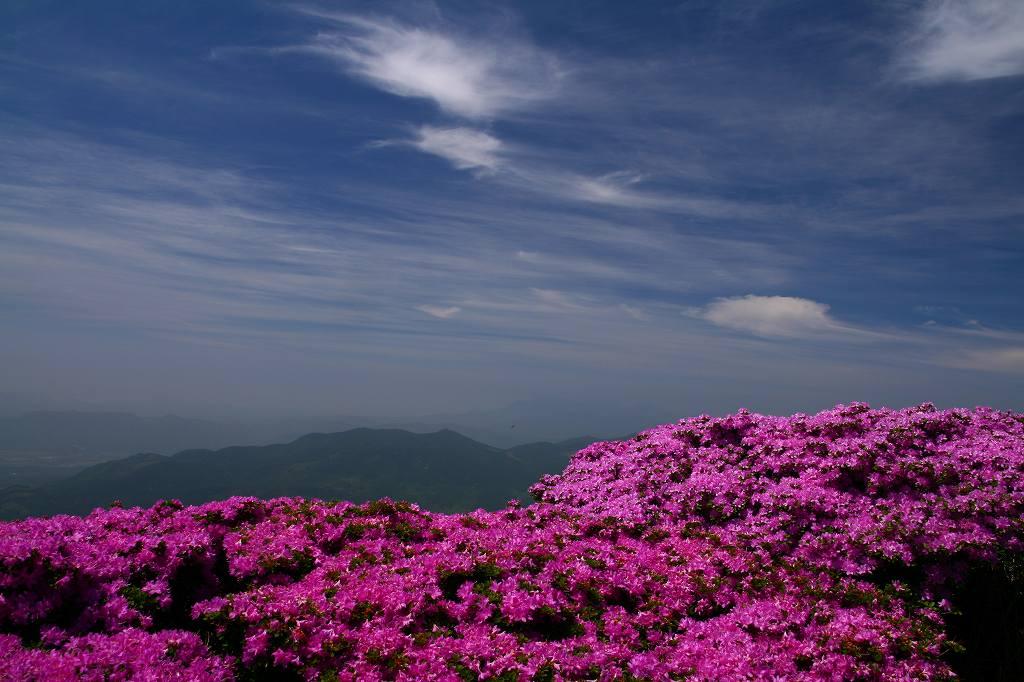 s-鶴見山20080601 101