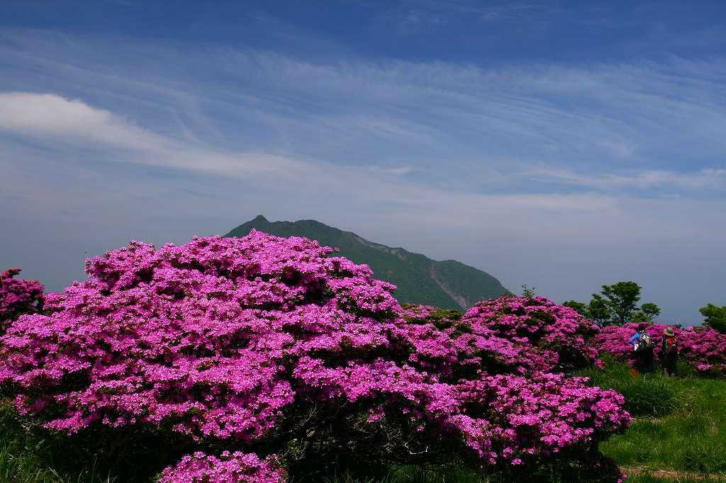 s-鶴見山20080601 111