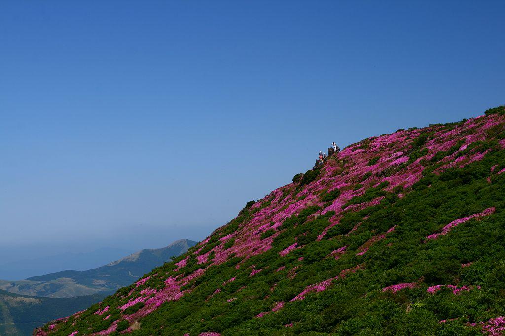 s-平治岳20080613 194