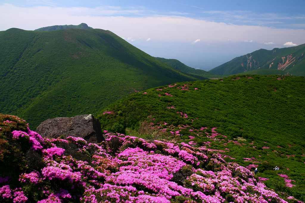 s-平治岳20080613 223