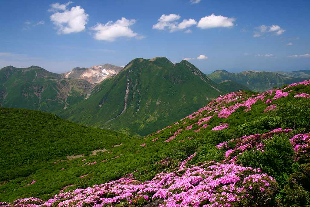 s-平治岳20080613 224