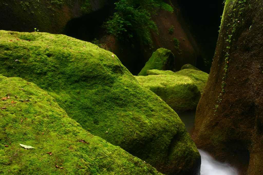s-由布川峡谷20080726 127