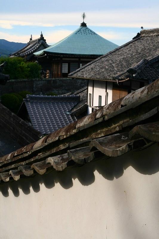 s-臼杵宵の盆20080809 035