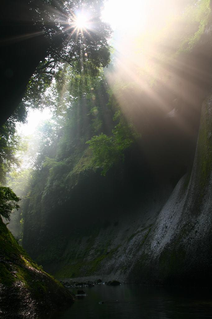 s-由布川峡谷椿20080802 032