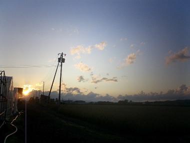 yuugure-hausumawari.jpg