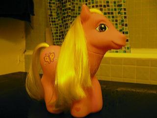 pony2.jpg