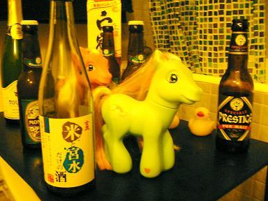 pony5.jpg