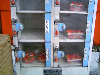 苺の自販機②