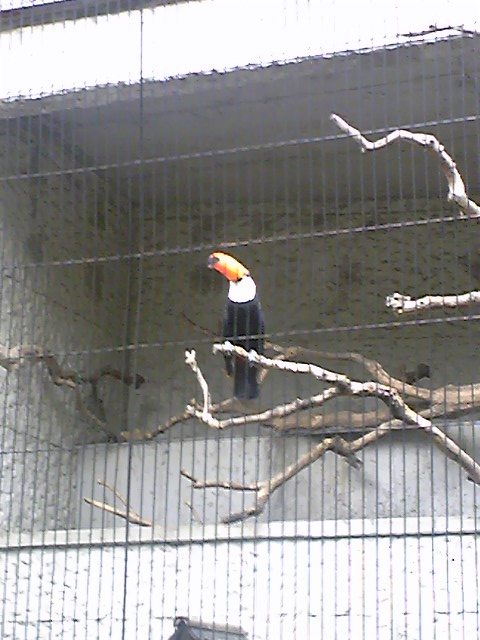 2009092204