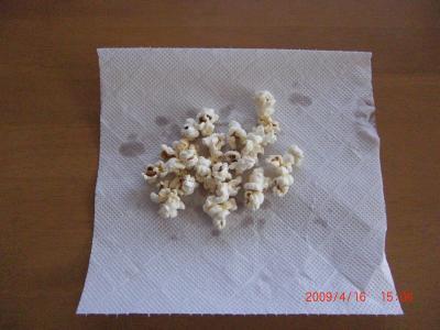 010_convert_20090417194248.jpg