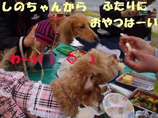 20060411133914.jpg