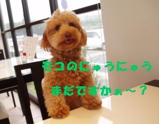 20060413213634.jpg
