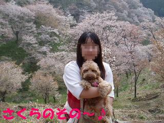 20060419001419.jpg