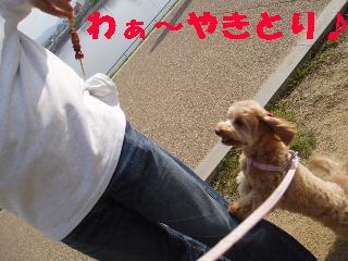20060429214651.jpg