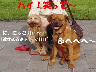 20060511220825.jpg