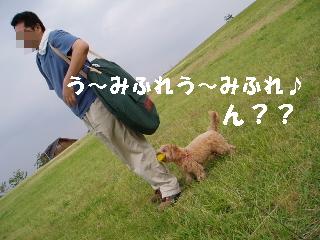 20060615011116.jpg