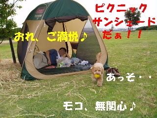 20060615015700.jpg
