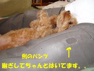 20060627010644.jpg