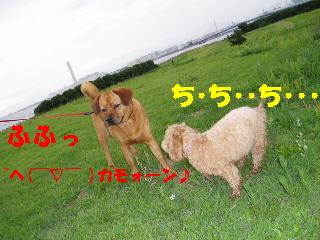 20060708215707.jpg