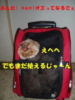 20060710222010.jpg