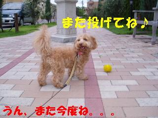 20060712203602.jpg