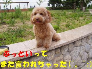 20060712203613.jpg