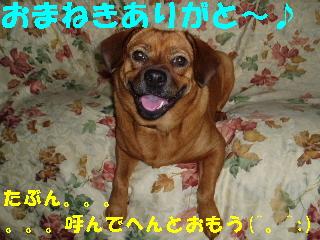 20060719201105.jpg