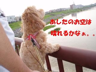 20060721203650.jpg