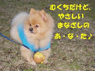 20060907201238.jpg