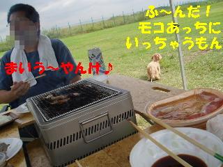 20060916151812.jpg