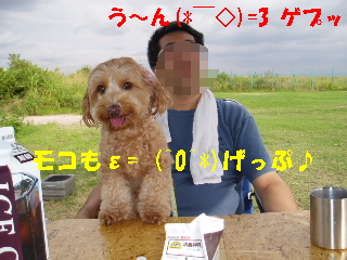 20060916151904.jpg
