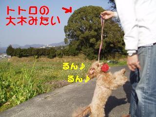 20070326210616.jpg