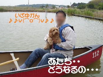 20070527100455.jpg