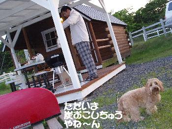 20070527102529.jpg