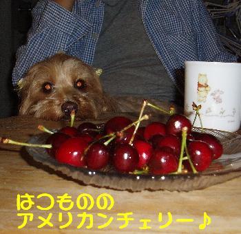20070606120134.jpg