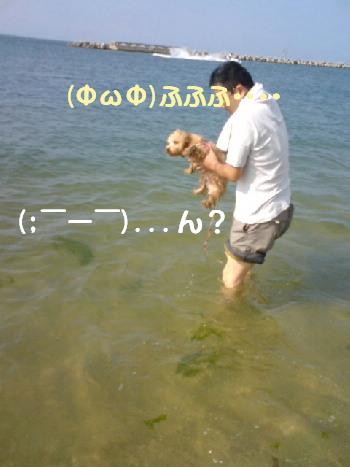 20070920105203.jpg