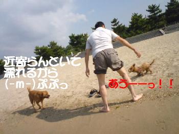 20070920105252.jpg