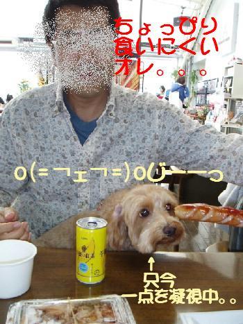 20071107151038.jpg
