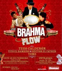 BrahmaFlow1