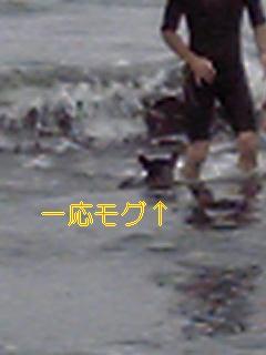 20050720091544.jpg