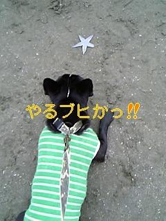 20050725085313.jpg