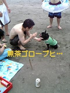 20050725085323.jpg
