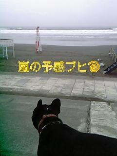 20050725140811.jpg