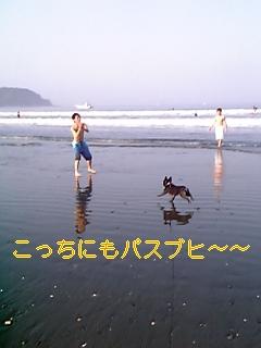 20050730094854.jpg